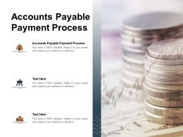 Accounts Payable Payment Process Ppt Powerpoint Presentation Inspiration Graphics Template Cpb