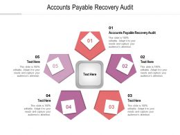 Accounts Payable Recovery Audit Ppt Powerpoint Presentation Outline Graphics Template Cpb