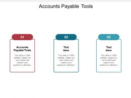 Accounts Payable Tools Ppt Powerpoint Presentation Infographics Background Images Cpb