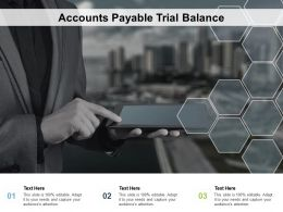 Accounts Payable Trial Balance Ppt Powerpoint Presentation Slides Graphics Cpb