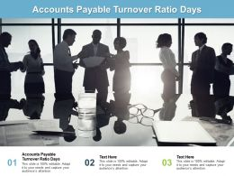 Accounts Payable Turnover Ratio Days Ppt Powerpoint Presentation Icon Templates Cpb