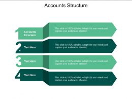 Accounts Structure Ppt Powerpoint Presentation Portfolio Layout Cpb
