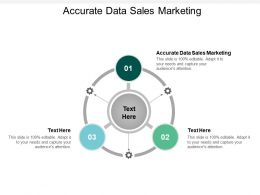 Accurate Data Sales Marketing Ppt Powerpoint Presentation File Good Cpb