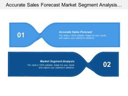 Accurate Sales Forecast Market Segment Analysis Organizational Knowledge