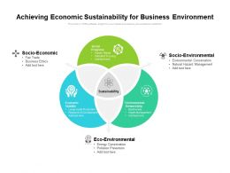 Achieving Economic Sustainability For Business Environment