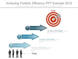 Achieving Portfolio Efficiency Ppt Example 2015