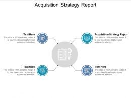 Acquisition Strategy Report Ppt Powerpoint Presentation File Portrait Cpb