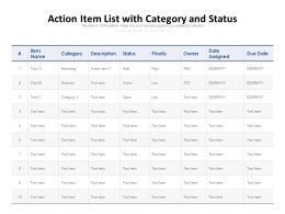 Action Item List With Category And Status