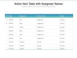Action Item Table With Assignees Names