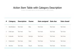 Action Item Table With Category Description