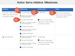 Action Items Initiative Milestones