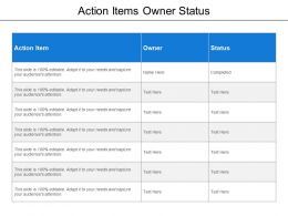 Action Items Owner Status