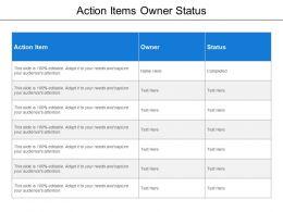 action_items_owner_status_Slide01