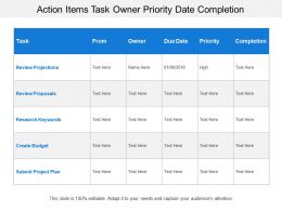 Action Items Task Owner Priority Date Completion