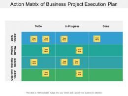 Action Matrix Of Business Project Execution Plan