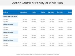 Action Matrix Of Priority Or Work Plan
