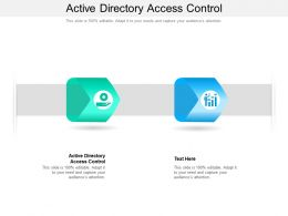 Active Directory Access Control Ppt Powerpoint Presentation Professional Templates Cpb