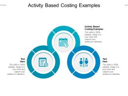 Activity Based Costing Examples Ppt Powerpoint Presentation Portfolio Inspiration Cpb