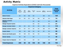 Activity Matrix Powerpoint Presentation Slide Template