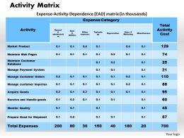 Activity Matrix Powerpoint Presentation Slide Template