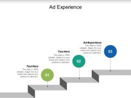 ad_experience_ppt_powerpoint_presentation_icon_display_cpb_Slide01