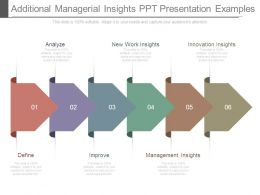 Additional Managerial Insights Ppt Presentation Examples