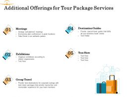 Additional Offerings For Tour Package Services Ppt Powerpoint Presentation Icon