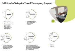 Additional Offerings For Travel Tour Agency Proposal Ppt Powerpoint Presentation Icon