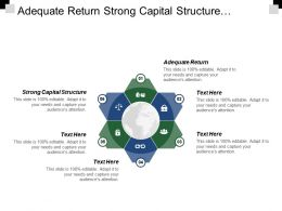 Adequate Return Strong Capital Structure Sustainable Growth Stakeholder Management