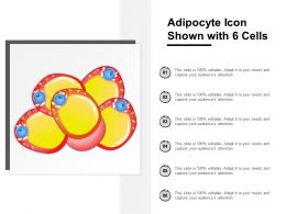 Adipocyte Icon Shown With 6 Cells