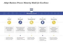 Adopt Business Process Maturity Model For Excellence Standardized Ppt Templates