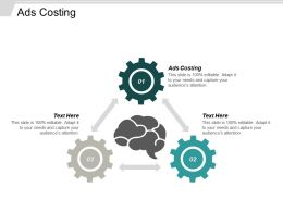 Ads Costing Ppt Powerpoint Presentation Gallery Example Cpb