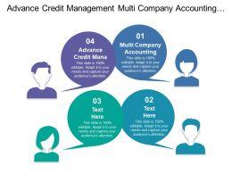 Advance Credit Management Multi Company Accounting Financial Statement Generator