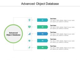 Advanced Object Database Ppt Powerpoint Presentation Styles Outfit Cpb
