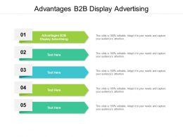 Advantages B2B Display Advertising Ppt Powerpoint Presentation Infographics Portfolio Cpb
