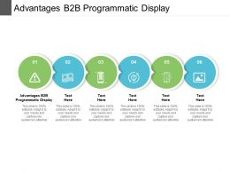 Advantages B2B Programmatic Display Ppt Powerpoint Presentation Ideas Layout Ideas Cpb