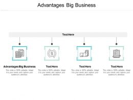 Advantages Big Business Ppt Powerpoint Presentation Outline Example Introduction Cpb
