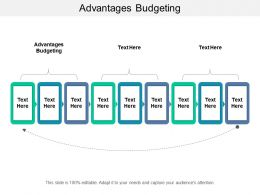 Advantages Budgeting Ppt Powerpoint Presentation Slides Samples Cpb