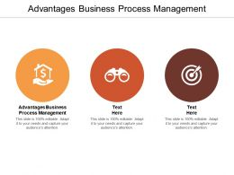 Advantages Business Process Management Ppt Powerpoint Presentation Summary Cpb