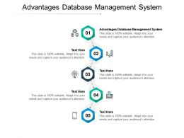 Advantages Database Management System Ppt Powerpoint Presentation Ideas Gallery Cpb