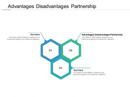 Advantages Disadvantages Partnership Ppt Powerpoint Presentation Layouts Icons Cpb