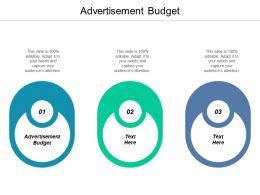 Advertisement Budget Ppt Powerpoint Presentation Gallery Skills Cpb