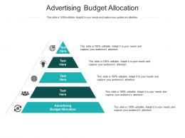 Advertising Budget Allocation Ppt Powerpoint Presentation Summary Cpb
