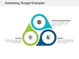 Advertising Budget Examples Ppt Powerpoint Presentation Portfolio Objects Cpb