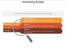 Advertising Budget Ppt Powerpoint Presentation Diagram Lists Cpb