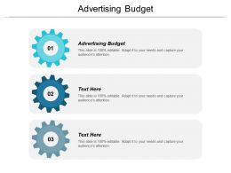 Advertising Budget Ppt Powerpoint Presentation Gallery Inspiration Cpb