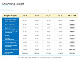 Advertising Budget Product Channel Segmentation Ppt Elements