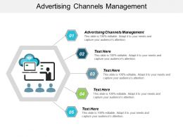Advertising Channels Management Ppt Powerpoint Presentation Visual Aids Cpb