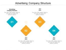 Advertising Company Structure Ppt Powerpoint Presentation Styles Graphics Design Cpb