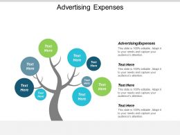 Advertising Expenses Ppt Powerpoint Presentation Gallery Introduction Cpb